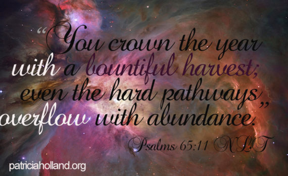 """You crown the year with a bountiful harvest; even the hard pathways overflow with abundance."" Psalms 65:11 NLT"