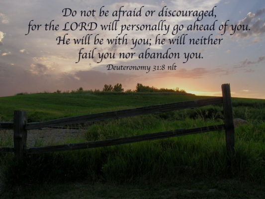 Do not be afraid or discouraged, for the LORD will personally go ahed of you. He will be with you; he will neither fail you nor abandon you. Deuteronomy 31:8 nlt