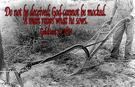 Do not be deceived: God cannot be mocked. A man reaps what he sows. Galatians 6:7