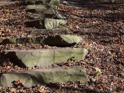 I took these steps very carefully, so I wouldn't fall. There are steps every believer needs to take so they don't fall.