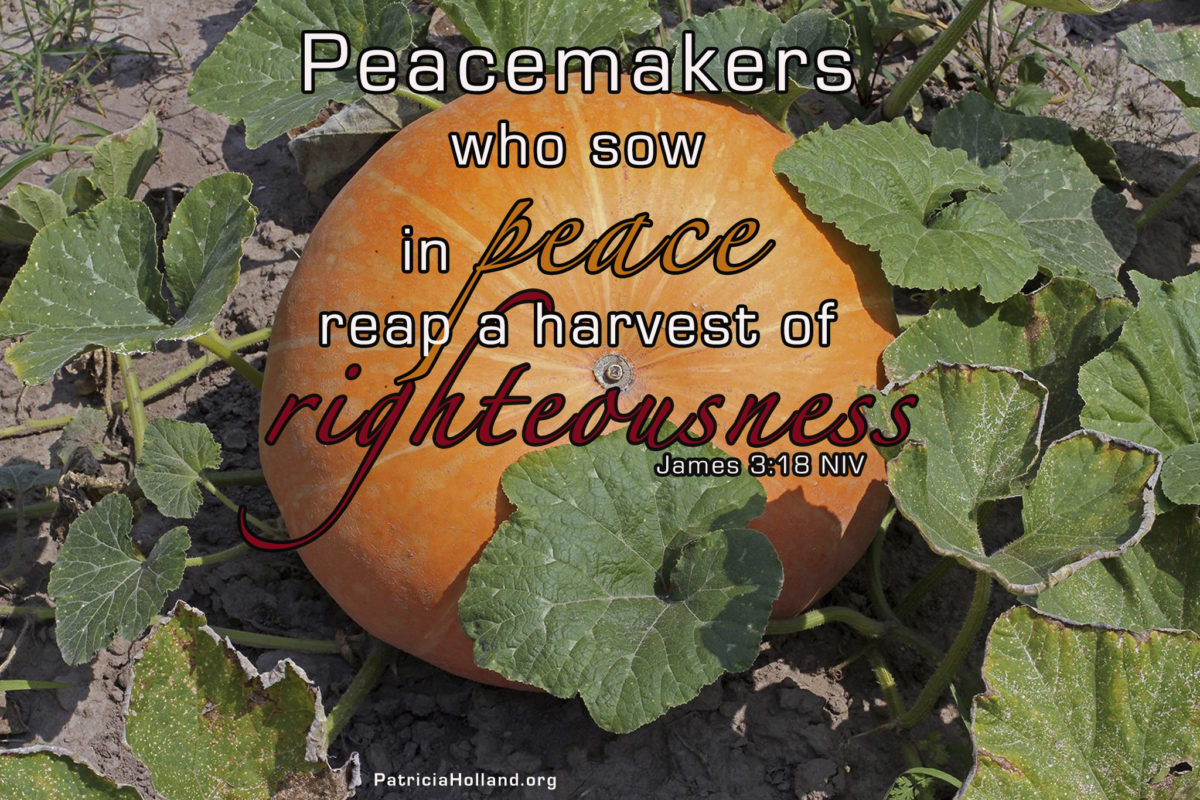 peacemakers who sow in peace reap a harvest of righteousness . James 3:18 NIV