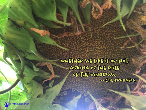 Whether we like it or not, asking is the rule of the Kingdom. -- C. H.
