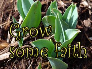 grow some faith?