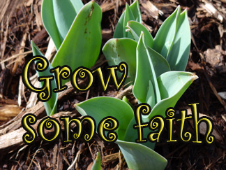 grow some faith?