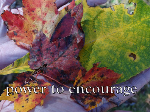 Saying thank you has the power to encourage