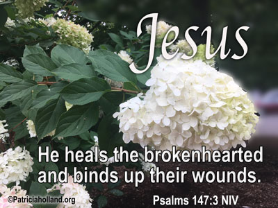 He heals the brokenhearted and binds up their wounds. Psalms 147:3