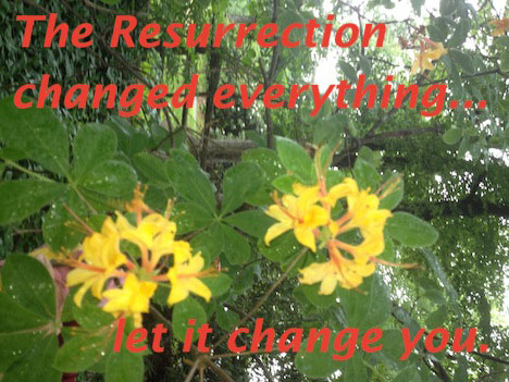 The Resurrection changed everything...let it change you.
